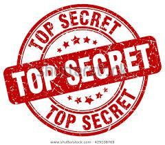 Tajná mise vlčat